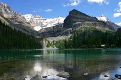 De Glorie van de berg stock afbeeldingen