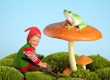 De gnoom en de kikker van de tuin Royalty-vrije Stock Afbeelding