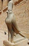 De god Horus Royalty-vrije Stock Fotografie