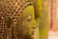 De Godin van Boedha van het gipspleistergezicht Heilig met groen mos stock fotografie