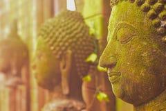 De Godin van Boedha van het gipspleistergezicht Heilig met groen mos stock afbeeldingen