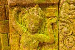 De Godin van het gipspleistergezicht Heilig met groen mos royalty-vrije stock fotografie