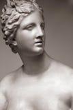 De godin van liefde Aphrodite (Venus) Royalty-vrije Stock Afbeeldingen