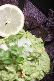 De Goedheid van Guacamole Stock Fotografie