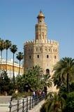 de gold oro塞维利亚西班牙torre塔 免版税库存照片