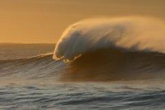De Golf van de ochtend Stock Afbeeldingen