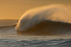 De Golf van de winter Royalty-vrije Stock Foto