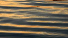 De Golf van het water stock videobeelden