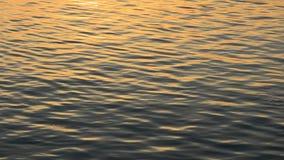 De Golf van het water stock footage