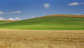 De golf van Toscanië stock foto's