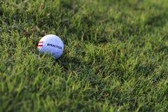 De Golfbal van de praktijk in het Gras Royalty-vrije Stock Foto