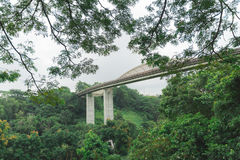 De golfbrug van Singapore Henderson bij het Park van Onderstelfaber royalty-vrije stock afbeelding