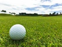 De golfcursus Stock Afbeeldingen