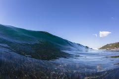 De golfertsader zwemt Stock Afbeelding