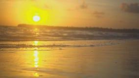 De golven in de rust op de oceaan in de zonsondergang strelen zacht de kust stock videobeelden