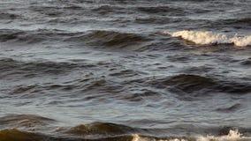 De golven van de Oostzee stock footage