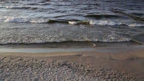 De golven van het overzees stock footage