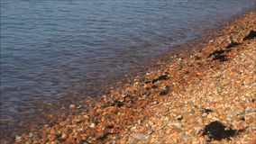 De golven van het strandgetijde stock video
