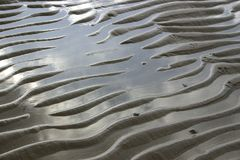 De golven van het zand en vogelvoetafdrukken Stock Afbeeldingen
