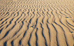 De golven van het zand op het strand Stock Foto