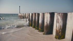 De golven wassen houten polen - een kunstmatige pijler IL en het mos stock footage