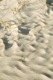 De golvenachtergrond van het zand Stock Foto