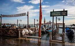 De gondeldienst op Grand Canal bij St het Vierkant van het Teken met San Georgio Maggiore Church op achtergrond in Venetië, Itali stock afbeeldingen