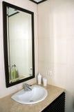 De Gootsteen van de badkamers stock fotografie
