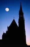 De gotische nacht van de kathedraalmaan Royalty-vrije Stock Afbeelding