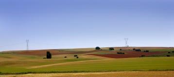 De gouden en groene landschappen van graangewassengebieden Royalty-vrije Stock Afbeeldingen