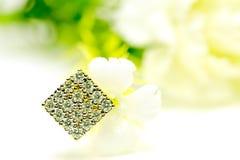 De gouden geïsoleerde juwelen van de de oorringsdiamant van de tegenhangerkamee met bloemen Stock Fotografie