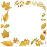 De gouden Grens van het Blad royalty-vrije stock foto