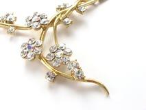De gouden halsband van de luxe stock afbeeldingen