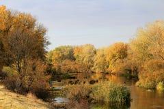 De gouden Herfst Royalty-vrije Stock Foto's