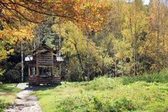De gouden herfst in het Altai-gebied in Rusland Mooi landschap - weg in de herfstbos stock foto