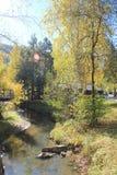 De gouden herfst in het Altai-gebied in Rusland Mooi landschap - weg in de herfstbos stock fotografie