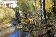 De gouden herfst in het Altai-gebied in Rusland Mooi landschap - weg in de herfstbos royalty-vrije stock foto