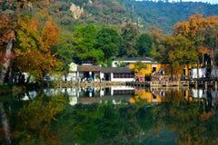 de gouden herfst in suzhou Stock Foto's