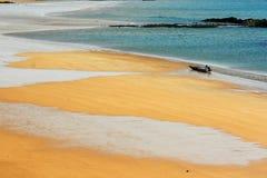 De gouden kust Royalty-vrije Stock Afbeelding