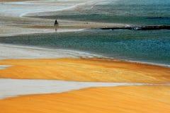 De gouden kust Royalty-vrije Stock Afbeeldingen