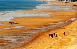 De gouden kust Stock Fotografie