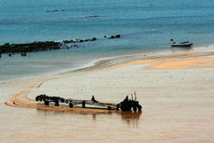 De gouden kust Stock Afbeelding
