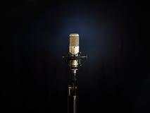 De Gouden Microfoon Stock Foto
