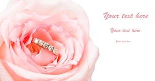 De gouden ring in mooi nam toe royalty-vrije stock foto's