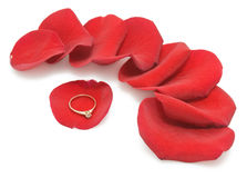De gouden ring op bloemblaadjes van nam toe Stock Foto