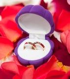 De gouden ringen van het huwelijk in een doos Stock Foto's