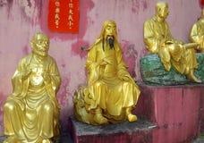 De gouden standbeelden van Boedha bij het Klooster van Tienduizendtalbuddhas, Hong Kong Stock Fotografie