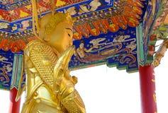 De gouden standbeelden van Boedha bij het Klooster van Tienduizendtalbuddhas, Hong Kong Royalty-vrije Stock Afbeelding
