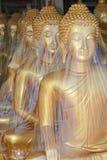 De gouden standbeelden van Boedha, Thailand. Royalty-vrije Stock Afbeeldingen