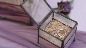 De gouden trouwringen liggen in een doos stock video